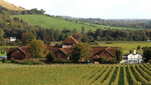 Denbies-Wine-Estate-2-915px