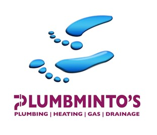 plumbminto's logo larger